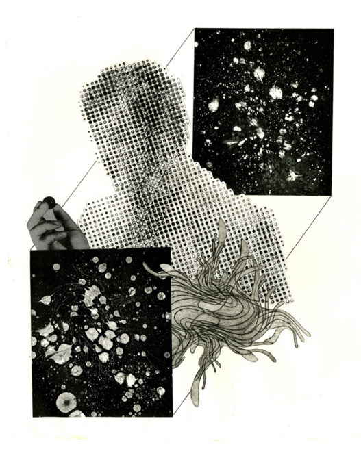 Collages (Selection)